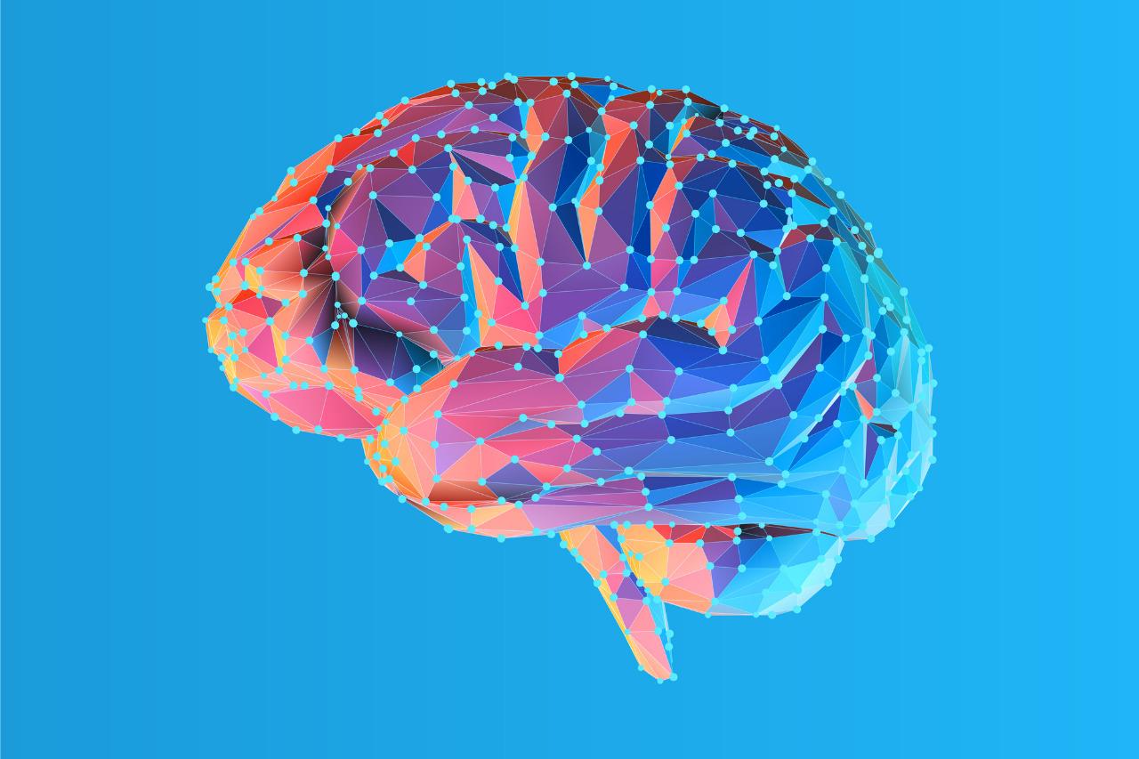 Computeranimiertes Gehirn