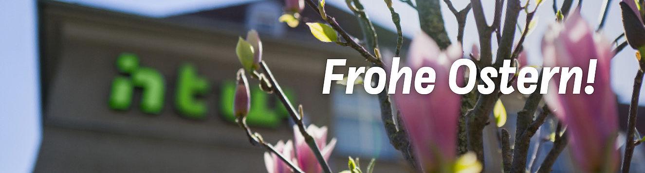 """Magnolien auf dem Campus Treskowallee, im Vordergrund """"Frohe Ostern!"""""""