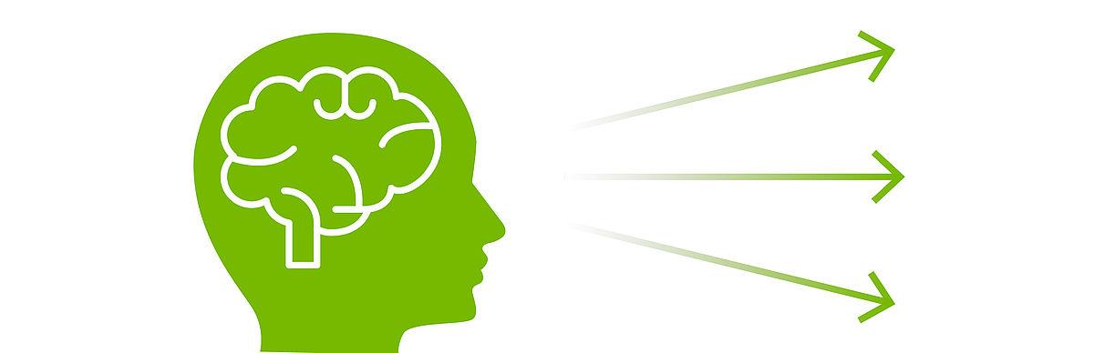 Menschliches Gehirn mit Pfeilen