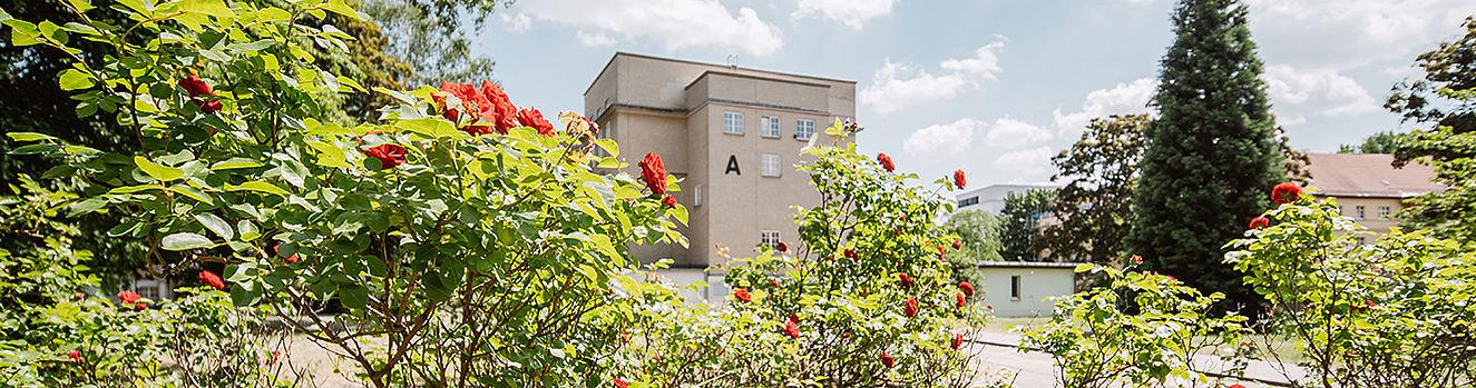 Campus Treskowallee