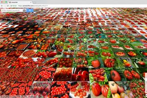 Suchergebnis Picsbuffet für Tomaten