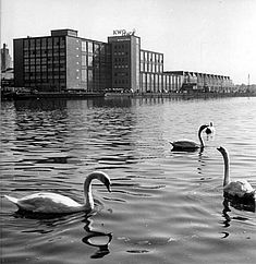 Blick auf das Kabelwerk Oberspree vom anderen Spreeufer aus, Foto von 1964 © Bundesarchiv/Weiß